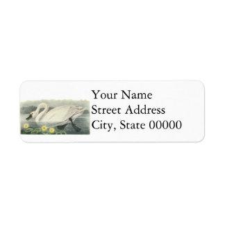 Tundra Swan, John Audubon Return Address Labels
