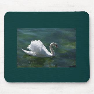 TUNDRA SWAN ON LAKE MOUSE PAD MOUSEPAD