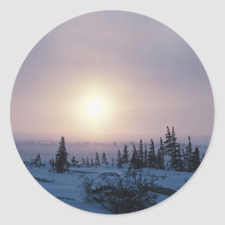 Tundra Wilderness Classic Round Sticker
