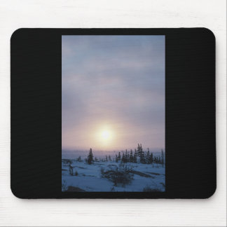 Tundra Wilderness Mouse Pad