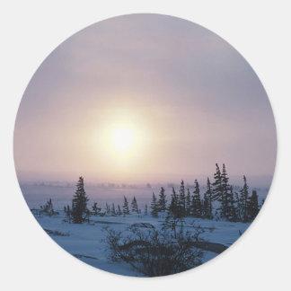 Tundra Wilderness Round Sticker