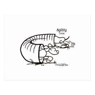Túnel de la agilidad - perro del palillo tarjeta postal