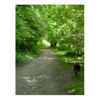 Túnel de la postal de las hojas