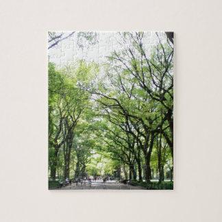 Túnel del árbol del Central Park de NYC Puzzle Con Fotos