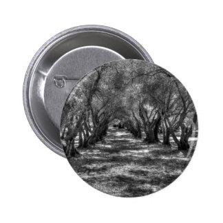 Túnel del árbol