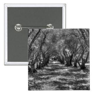 Túnel del árbol pins