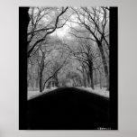 Túnel del árbol poster