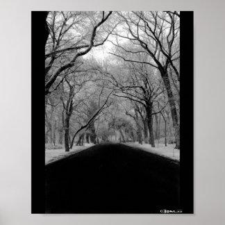 Túnel del árbol póster