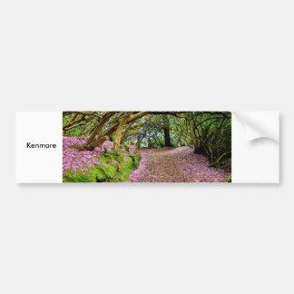 Túnel del rododendro de Kenmare Pegatina Para Auto