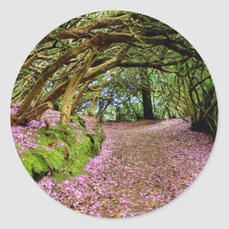 Túnel del rododendro de Kenmare Pegatina Redonda