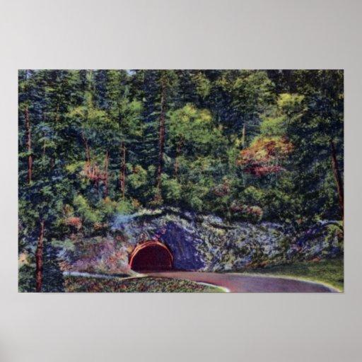 Túnel Newfound de la carretera de Gap de las grand Poster