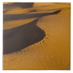 Túnez, área de Ksour, Ksar Ghilane, ergio magnífic Teja Ceramica