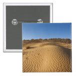 Túnez, área de Ksour, Ksar Ghilane, ergio magnífic Pin Cuadrado