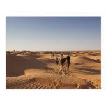 Túnez, área de Ksour, Ksar Ghilane, ergio Postales