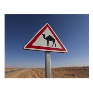 Túnez, área de Ksour, Ksar Ghilane, ergio Postal