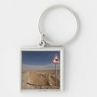 Túnez, área de Ksour, Ksar Ghilane, oleoducto Llavero Cuadrado Plateado