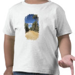 Túnez, área de Ksour, Ksar Ghilane, palma datilera Camisetas