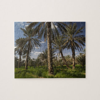 Túnez, área de Ksour, Ksar Ghilane, palma datilera Puzzle