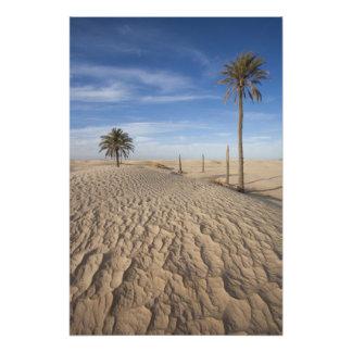 Túnez, desierto del Sáhara, Douz, gran duna, amane Fotografías