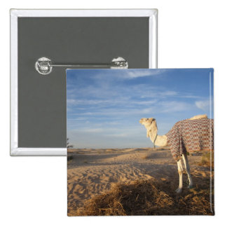 Túnez, desierto del Sáhara, Douz, gran duna, camel Pin Cuadrada 5 Cm