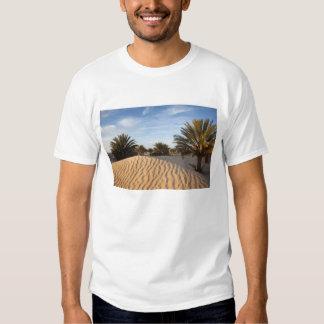 Túnez, desierto del Sáhara, Douz, gran duna, palma Poleras