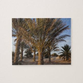 Túnez, desierto del Sáhara, Douz, gran duna, palma Rompecabezas Con Fotos