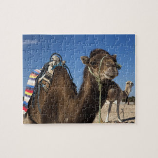 Túnez, desierto del Sáhara, Douz, zona Touristique Rompecabeza