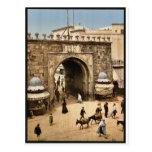 Tunis. La porte française classic Photochro Post Card