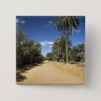 Tunisia, Ksour Area, Ksar Ghilane, date palm Button