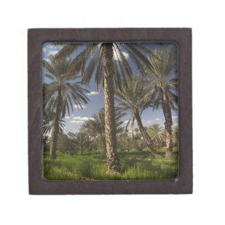 Tunisia Ksour Area Ksar Ghilane date palm Premium Keepsake Boxes