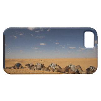 Tunisia, Ksour Area, Ksar Ghilane, Grand Erg 2 iPhone SE/5/5s Case