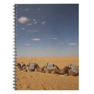 Tunisia, Ksour Area, Ksar Ghilane, Grand Erg 2 Spiral Notebook