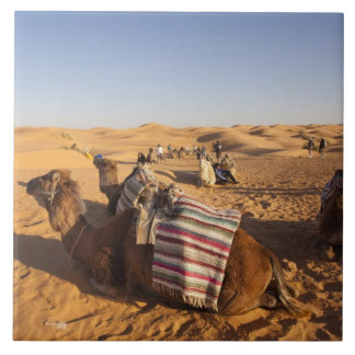 Tunisia, Ksour Area, Ksar Ghilane, Grand Erg 3 Tiles