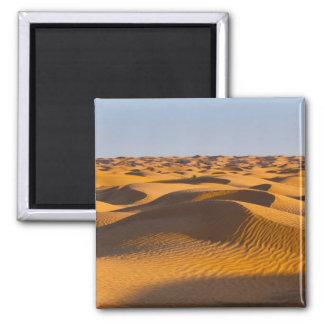 Tunisia, Ksour Area, Ksar Ghilane, Grand Erg 4 2 Inch Square Magnet