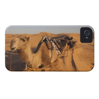 Tunisia, Ksour Area, Ksar Ghilane, Grand Erg 5 iPhone 4 Case