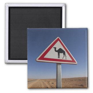 Tunisia, Ksour Area, Ksar Ghilane, Grand Erg 6 2 Inch Square Magnet