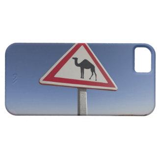 Tunisia, Ksour Area, Ksar Ghilane, Grand Erg 6 iPhone SE/5/5s Case