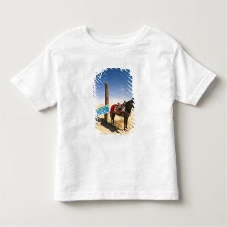 Tunisia, Ksour Area, Ksar Ghilane, horse in the Toddler T-shirt