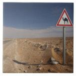 Tunisia, Ksour Area, Ksar Ghilane, Oil Pipeline Ceramic Tile
