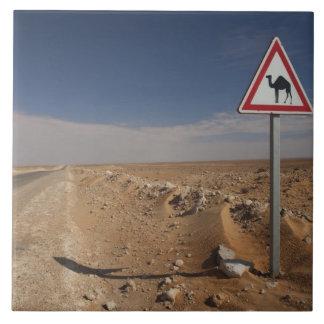 Tunisia, Ksour Area, Ksar Ghilane, Oil Pipeline Tile