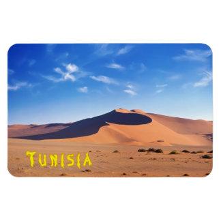 Tunisia Magnet