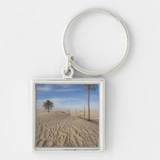 Tunisia, Sahara Desert, Douz, Great Dune, dawn Keychain