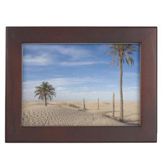 Tunisia, Sahara Desert, Douz, Great Dune, dawn Memory Box