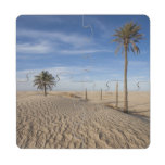 Tunisia, Sahara Desert, Douz, Great Dune, dawn Puzzle Coaster