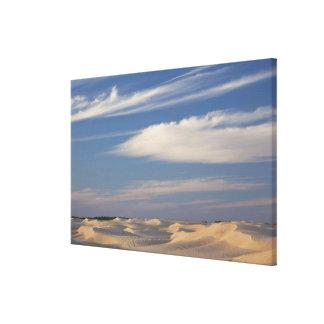 Tunisia, Sahara Desert, Douz, Great Dune, dusk 2 Canvas Print