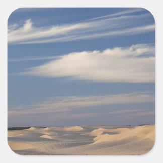 Tunisia, Sahara Desert, Douz, Great Dune, dusk 2 Square Sticker