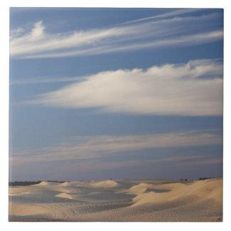 Tunisia, Sahara Desert, Douz, Great Dune, dusk 2 Tiles