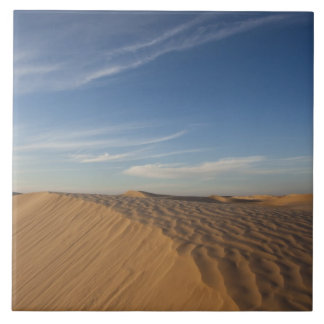 Tunisia, Sahara Desert, Douz, Great Dune, dusk Tile