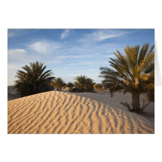 Tunisia, Sahara Desert, Douz, Great Dune, palm 2 Greeting Card