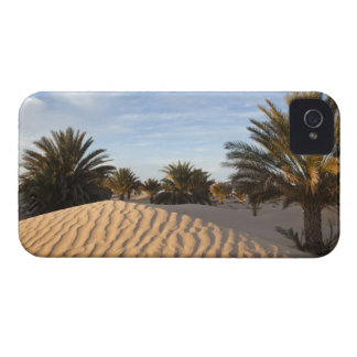 Tunisia, Sahara Desert, Douz, Great Dune, palm 2 iPhone 4 Cover